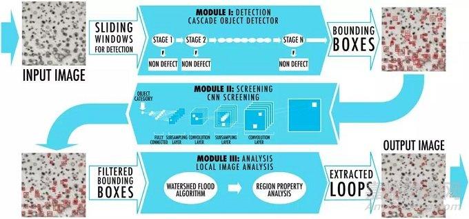 电子显微图像的自动识别